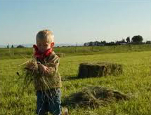 boy in hayfield