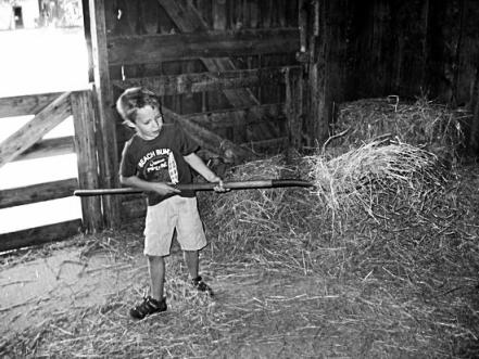 boy moving hay
