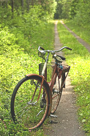 old bike 2