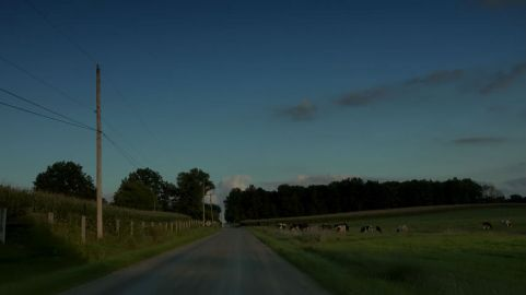 country road night