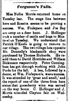 Ferguson Falls news Nov 13 1896 p 5