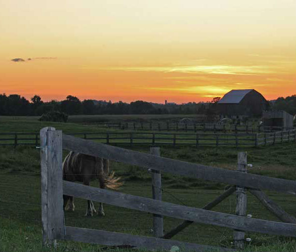 Farmhouse At Dusk: Summer Dusk On The Farm « Arlene Stafford Wilson