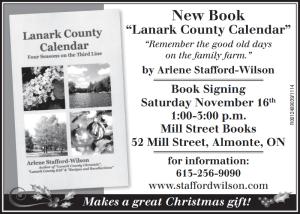 Ad -for Almonte Nov 2013