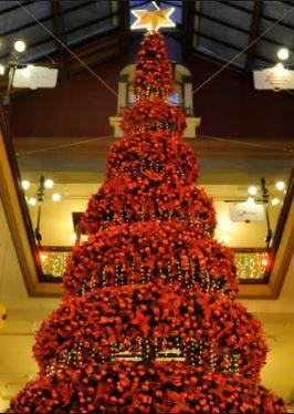 Angola Christmas tree