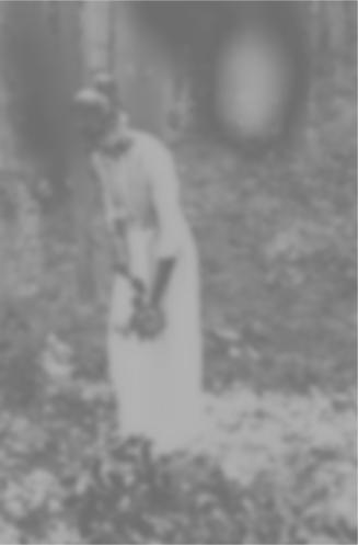 Garden ghost 2