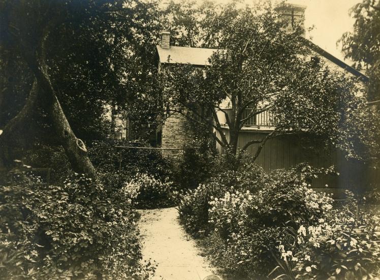 Matheson House garden 1