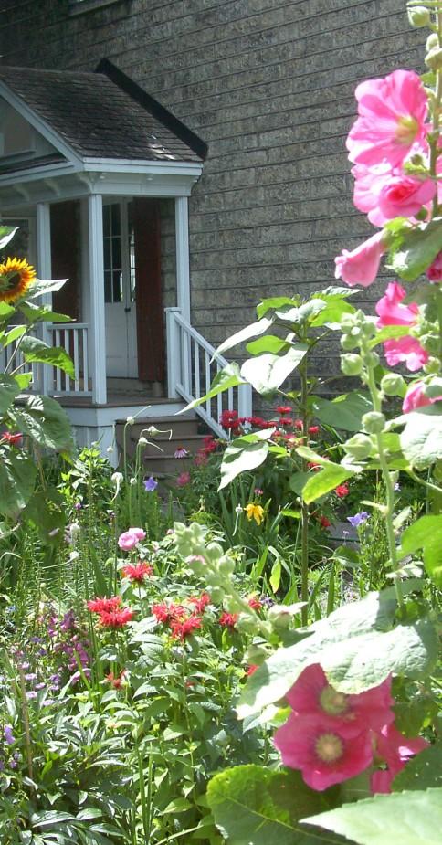 Matheson House garden