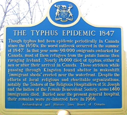 typhus