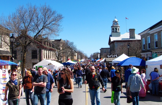 festival of the maples crowd