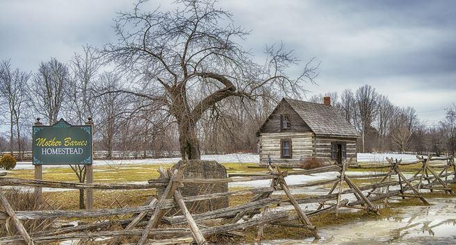 Jane's cabin