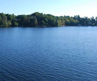 Christie Lake banner 4