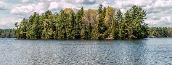 Christie lake banner 5
