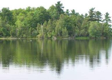 Christie Lake banner 6