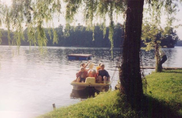Christie Lake by the willow tree