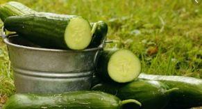 cucumber pai;