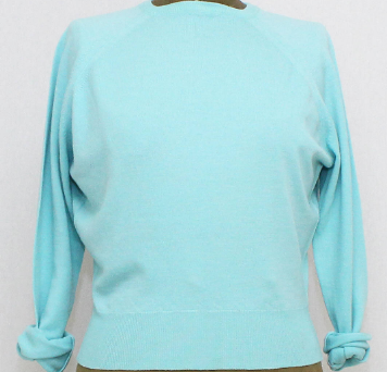kitten pale blue sweater