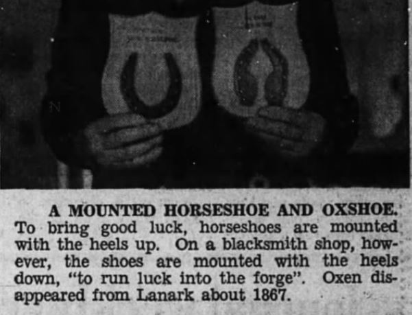 Walter Cameron horseshoe 1971
