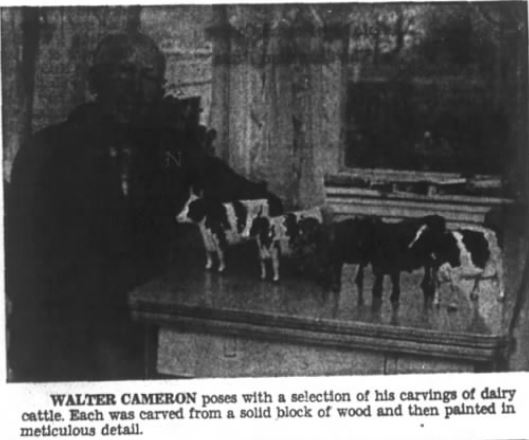 Walter with dairy cattle 1973