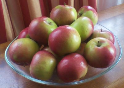 apples bowl